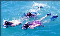 Snorkeling in the Florida Keys