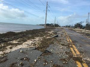 Sea Oats Beach Hurricane Irma