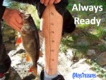 fishing-ruler-2