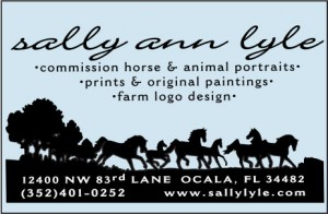 Sally Ann Lyle
