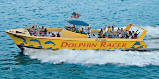 Dolphin Racer - Tampa Sightseeing for Less