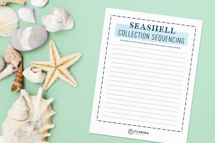 seashell collection sequencing worksheet