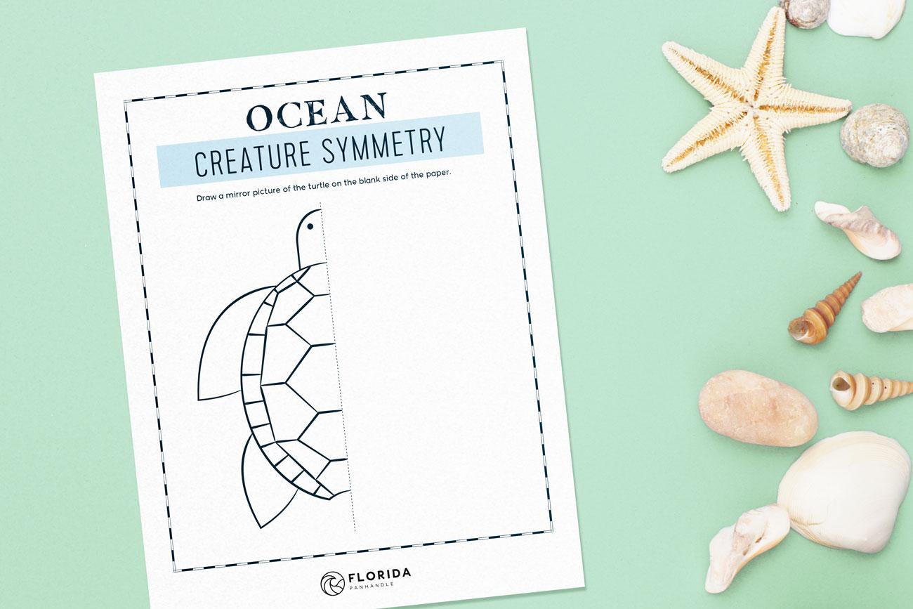10 Educational Ocean Activities For Kids
