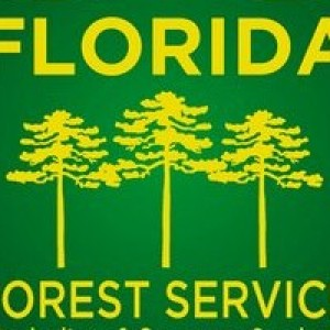 Getting out in florida state forests is now easier than before! Ffs Florida Forest Service 400x200 Florida Politics Campaigns Elections Lobbying Government