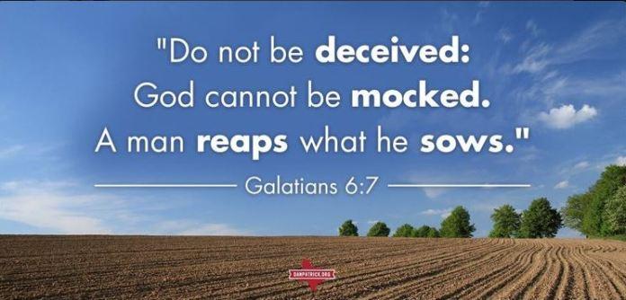 Bible quote Dan Patrick