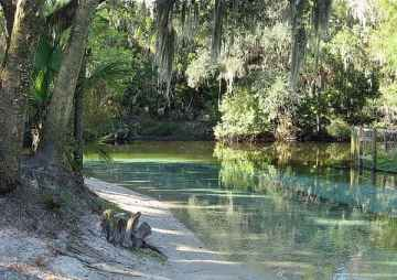 Lithia Springs run at the Alafia River
