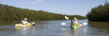 Kayak trail at Curry Hammock State Park