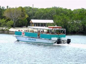 Snorkelers head out to the reef