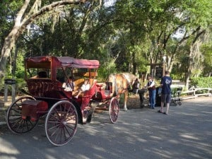Carriage ride at Fort Wilderness