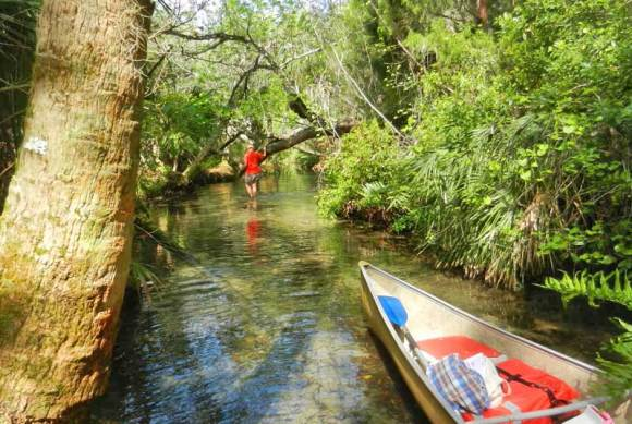 """We loved wading up Baird Creek when it got too shallow to paddle. It didn't take long to reach """"The Crack."""""""