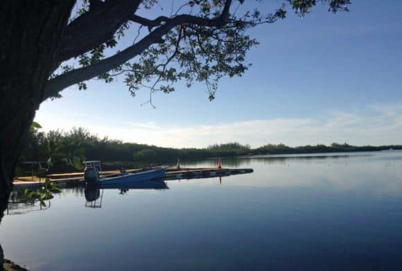 Sugarloaf Bay (Photo courtesy Tamara Scharf)