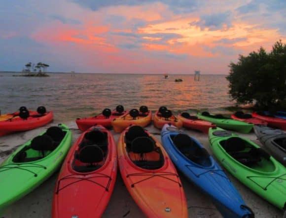 Merritt Island National Wildlife Refuge Kayak Tour