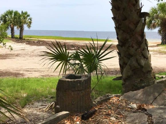 Wakulla Beach Road is a hard-packed sand road through a beautiful forest that ends at the Gulf where thousands of fiddler crabs cover the ground and the picturesque ruins of an old hotel are crumbling. (Photo: Bonnie Gross)