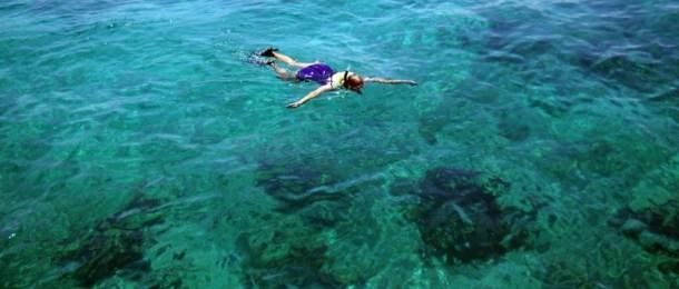 Snorkeling the Mandalay wreck at Biscayne National Park