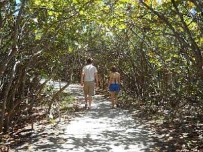 Trail at Blowing Rocks, Jupiter, Florida, beach
