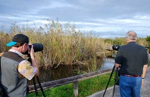 Photographers on Anhinga Trail in the Everglades National Park