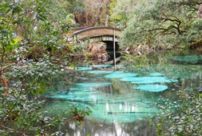 nature trail bridge at Juniper Springs