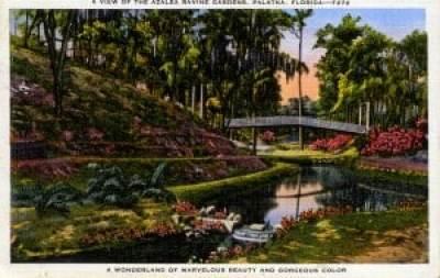 Historic image of Ravine Gardens State Park, Palatka, Florida