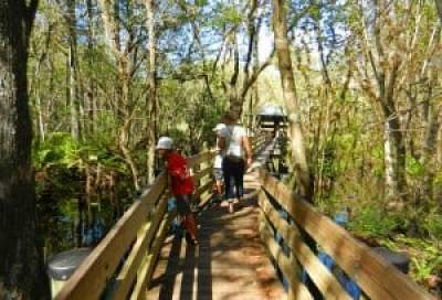 A family explores Six Mile Cypress Slough Preserve, Fort Myers.