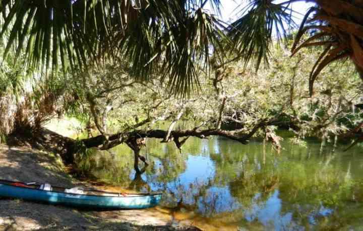 Turkey Creek Sanctuary canoe landing