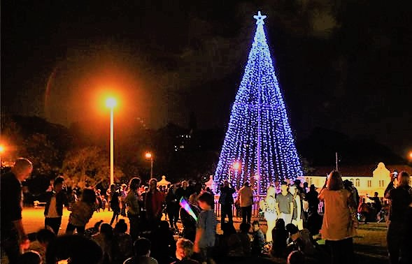 Support The Hospice Tree of light