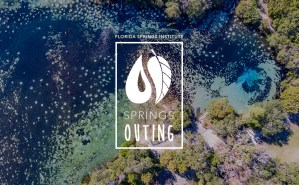 Springs Outing: ONF Springs Fish Study