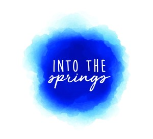 Into the Springs Music Festival Preview