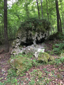 Springs Outing: Remarkable Karst Features Near High Springs