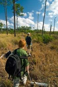 Juniper Wilderness Hiking