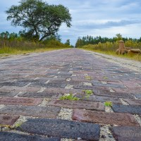 Florida's Ghost Highway: The Old Red Brick Road