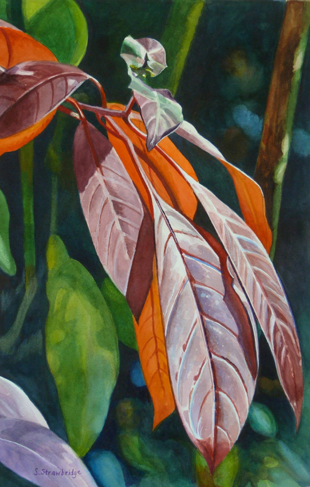 Strawbridge, Susan - Red Leaves