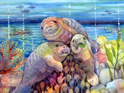 Ayotte, Martha - All My Friends Are Manatees