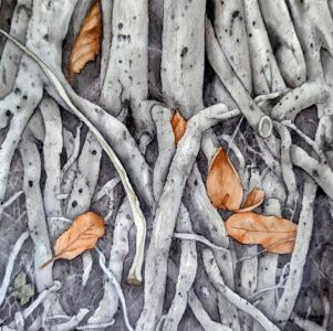 Pattison, Joanne - Ficus Roots