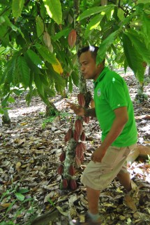 Republica Dominicana -Eco Caribe Tour-Plantatie Cacao