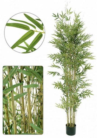 Bambú 185cm