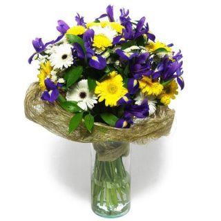 ramo-de-iris-y-gerberas-blancas-y-amarillas