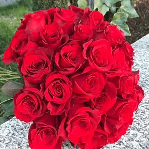 ramo de 24 rosas rojas de tallo largo