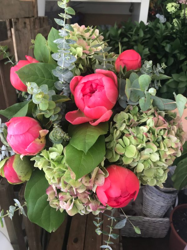 Peonias y Hortensias