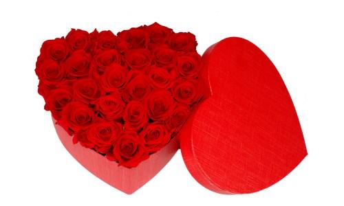 Caja Corazón Rosa Eterna Roja. Floristería Pétalos · Tienda Online. Gran selección de complementos florales: jarrones, maceteros, cestas para flores y plantas. Haz tu pedido online y recibe el envío en tu domicilio.