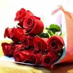 Ramo de doce rosas rojas para arreglos florales Tijuana - Florerias en Tijuana