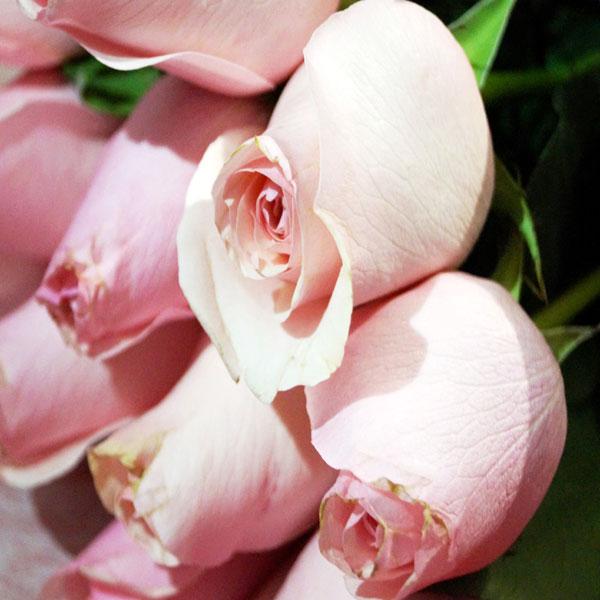 Doce poemas de amor con chocolate para Arreglos florales Tijuana - Florerias en Tijuana