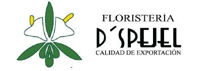 Floreria-dspejel