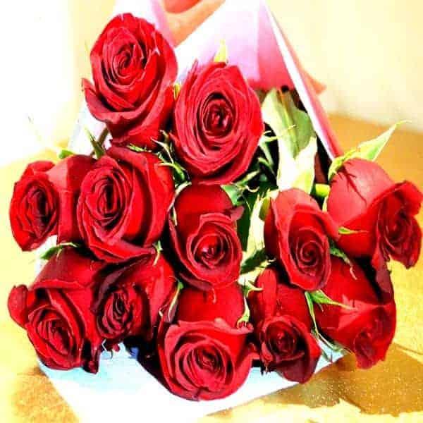 Docena de rosas rojas - Florería Pachuca