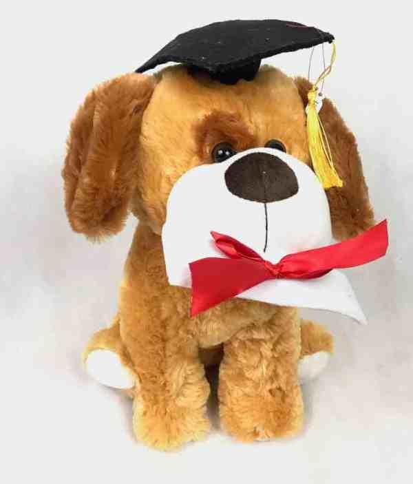 Perro de peluche graduado