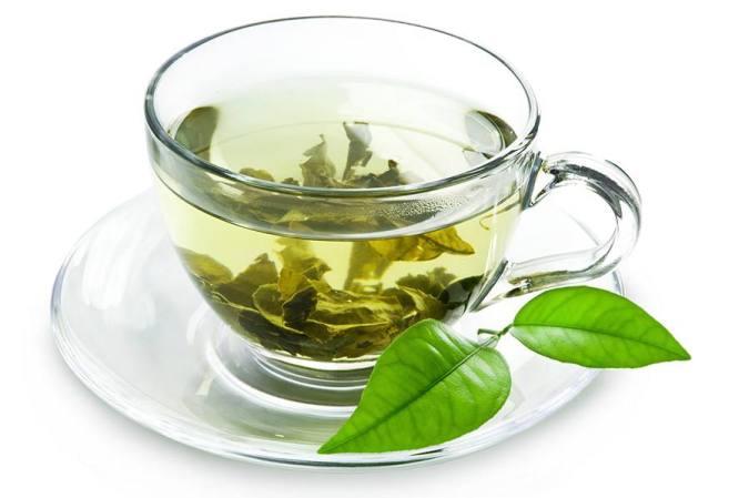 Groene thee ter ondersteuning van je huisdier, hond, kat, konijn.