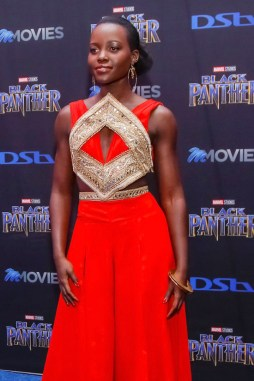 "Lupita Nyong'o and Danai Gurira Fashion Looks at ""Black Panther"" Premiere in S. Africa"