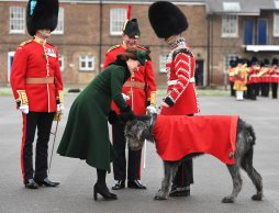 The British Know How to Do Ceremony, Pomp and Circumstance – Details Here!