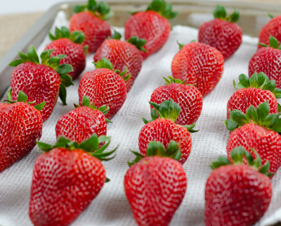 Strawberries drying on towel