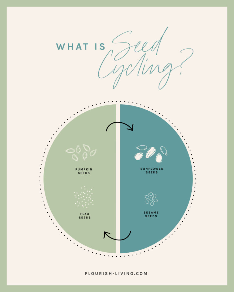 This graphic illustrates the basics on seed cycling for hormones and how to seed cycle.