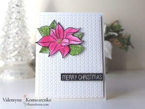 Poinsettia on the Embossed Background
